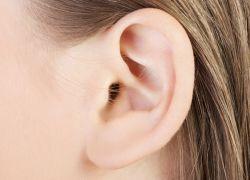 уши, ортопластика