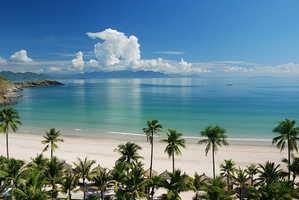 отдых, море, пальмы, пляж